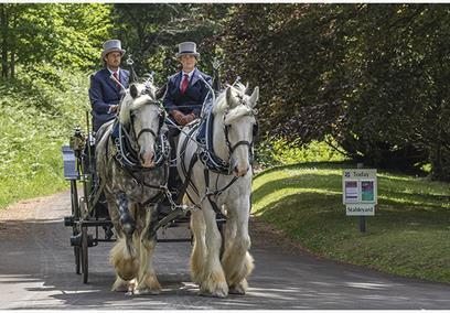 Christmas Horse and Carriage Rides at Tyntesfield
